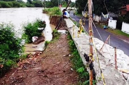 Tanggul Kali Cisanggarung di Pekauman Losari Brebes Kritis