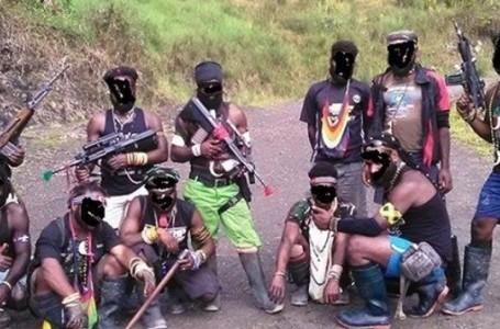 Mantan OPM Papua Pernah Usulkan KKB Sebagai Teroris